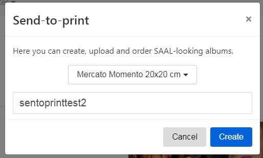 albumproofing and send to print album design software